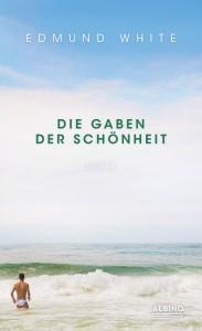 DieGabenDerSchönheit_Cover_blog